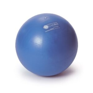 Sissel Securemax Exercise Ball Professional